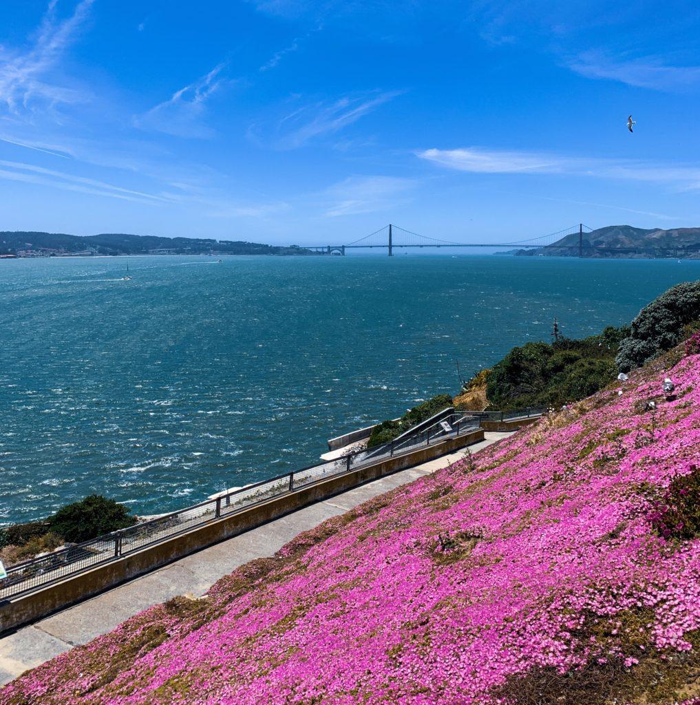 Alcatraz'dan Golden Gate'e baış